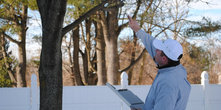 Worcester MA Certified Arborist, Graeme Elliott